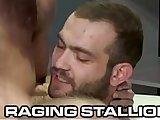 anal, couple, fetish, fuck, gay, hairy, hardcore, horny